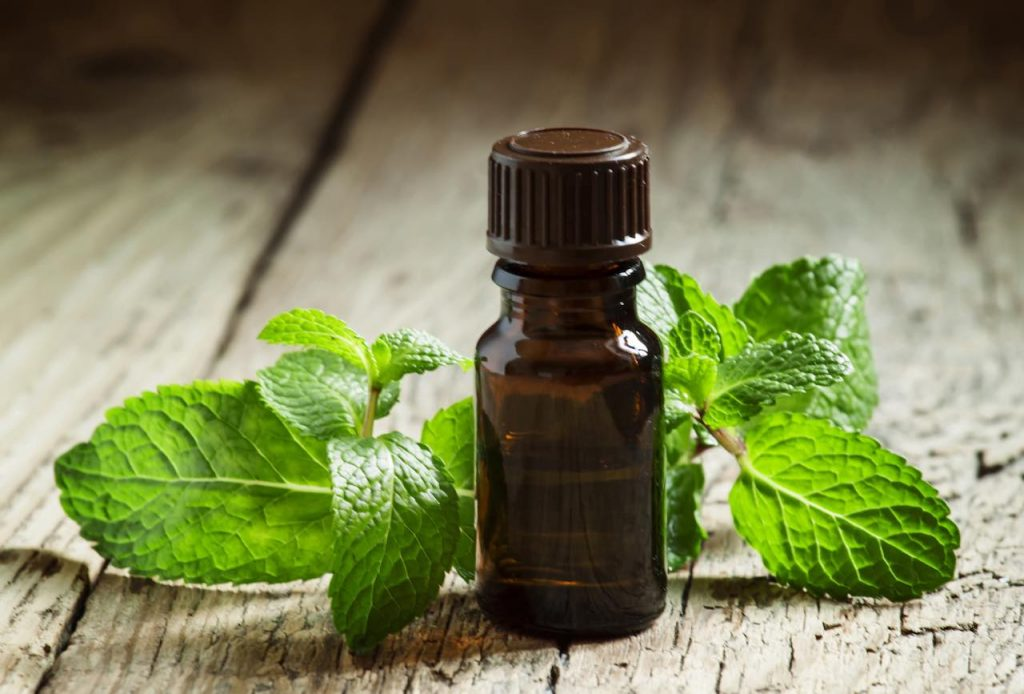 Essential-oil-of-peppermint-