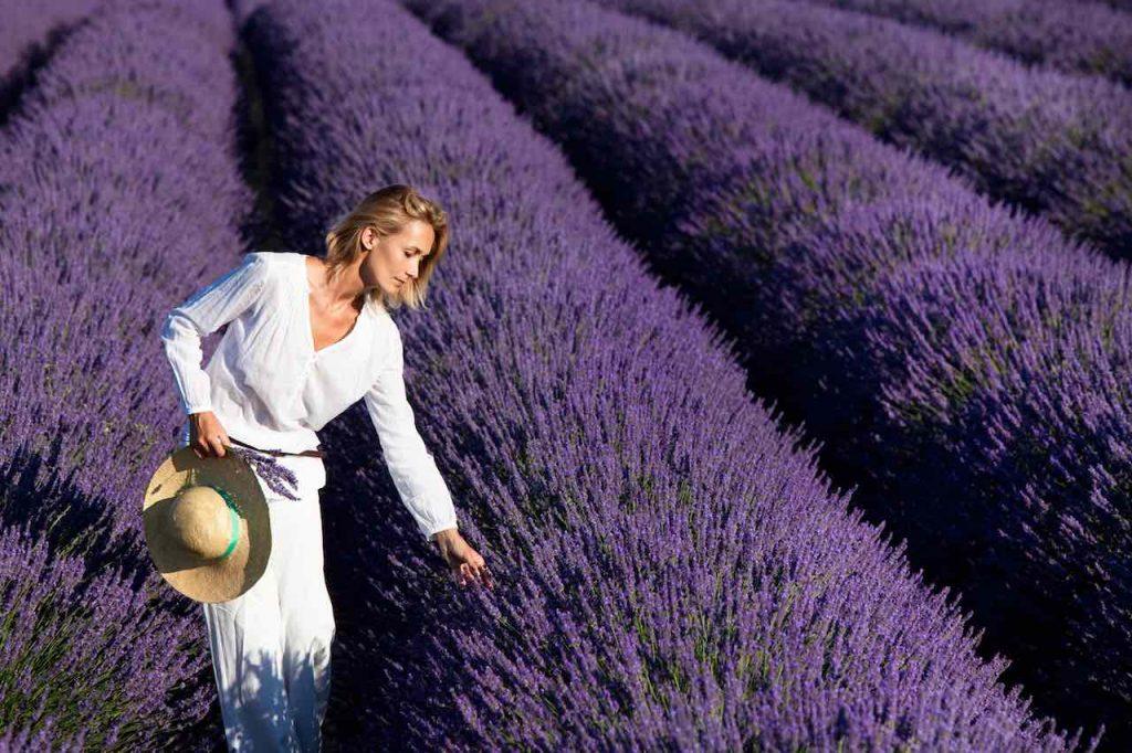 woman lavender fields